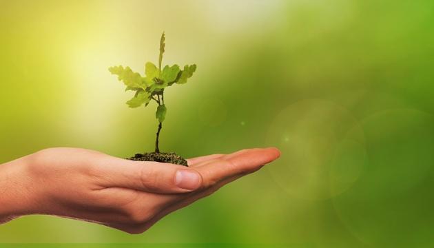 Николаевская община присоединилась к глобальному экологическому проекту «Озеленение планеты»